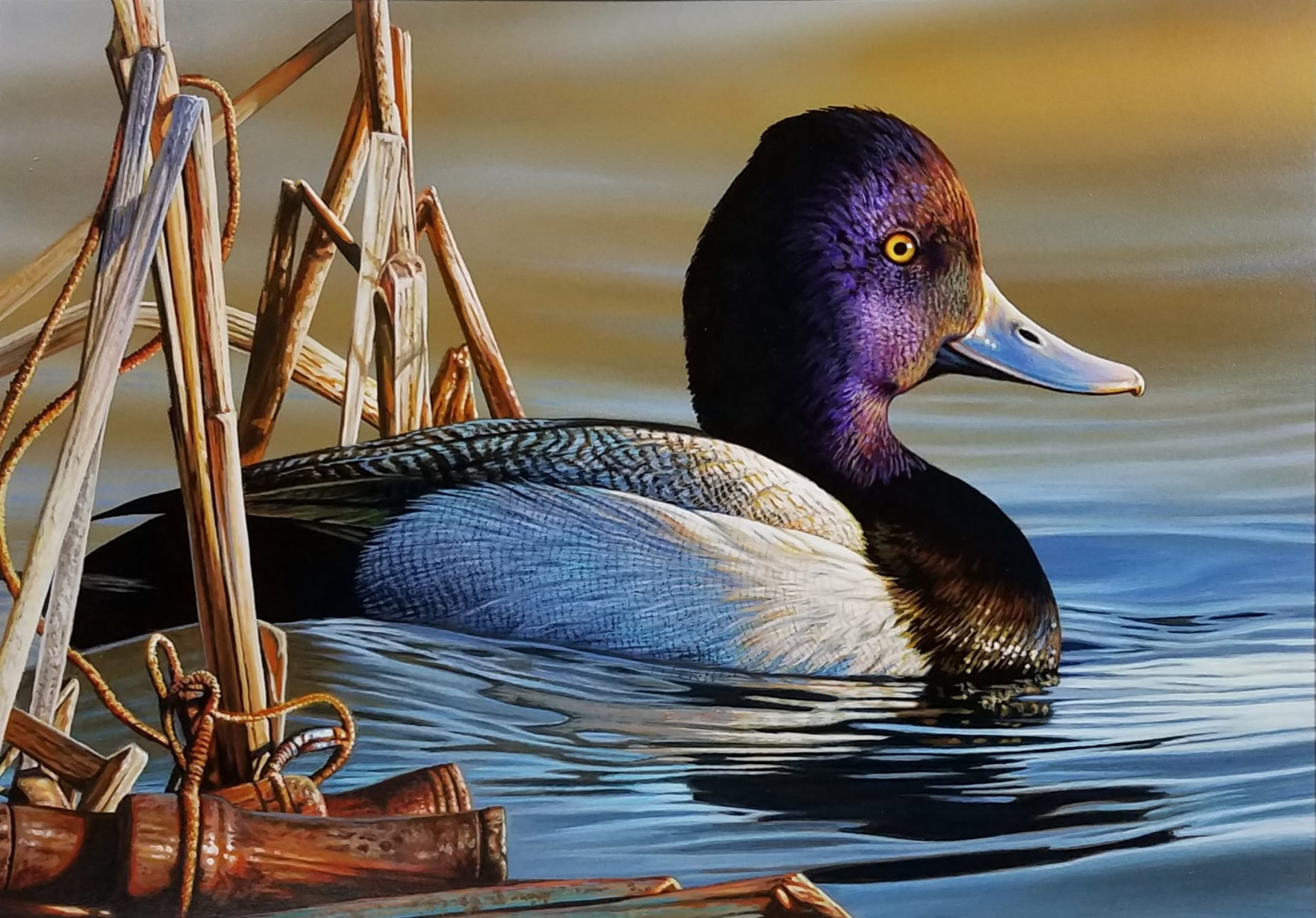 Drake Lesser Scaup by Richard Clifton 2021-2022 Federal Duck Stamp Winner