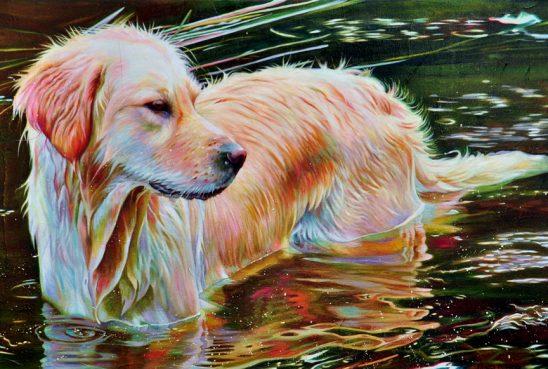 Sadies Bath – Golden Retriever by Kelly McNeil