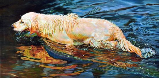 Reflections of Sadie by Kelly McNeil