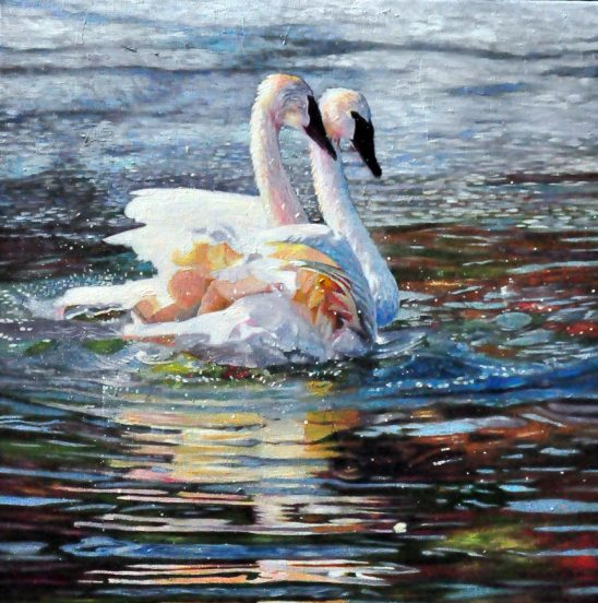 Two Swans in Love 2 by Kelly McNeil