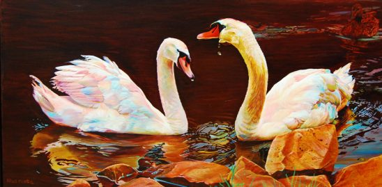 Two Swans in Love by Kelly McNeil