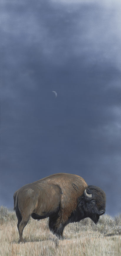 Bison and Moon by Terry Isaac