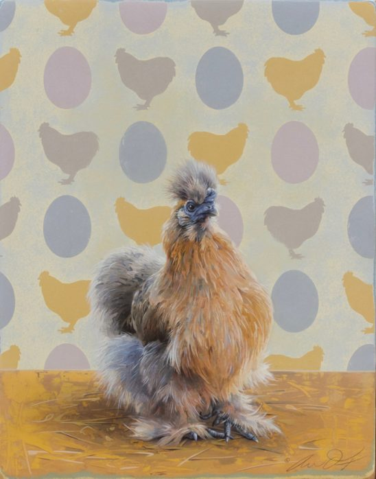 Marco Polo – Buff Silkie by Andrew Denman