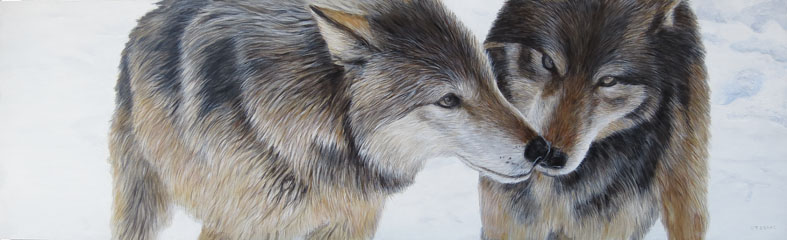 Nose Kisses by Terry Isaac