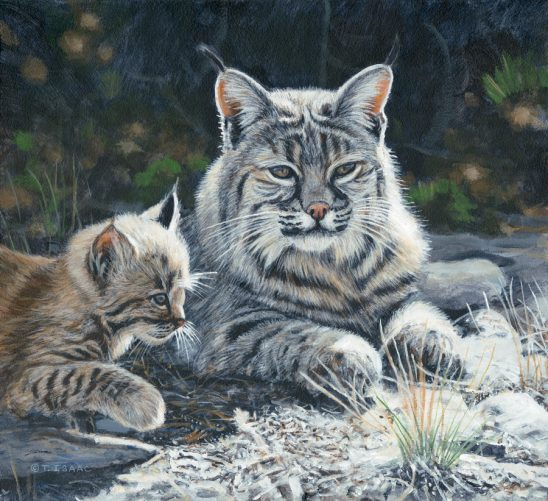 Staying Close by Terry Isaac