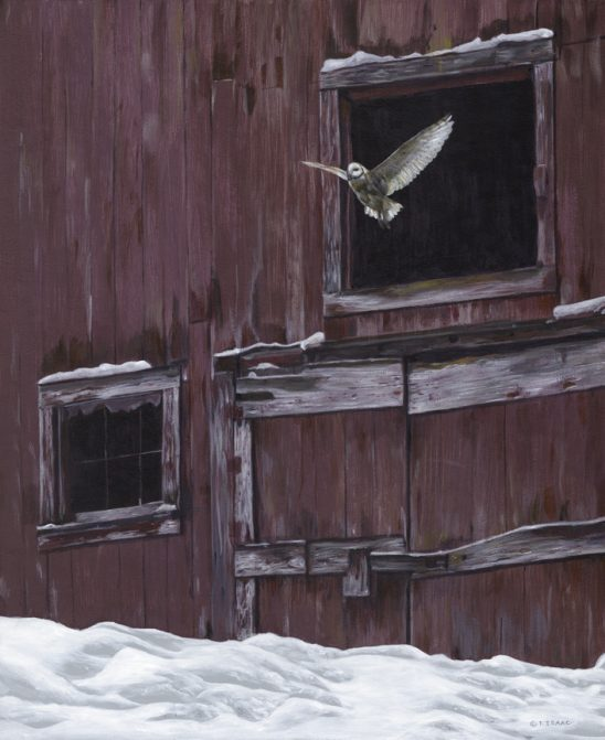 Winter Flight by Terry Isaac