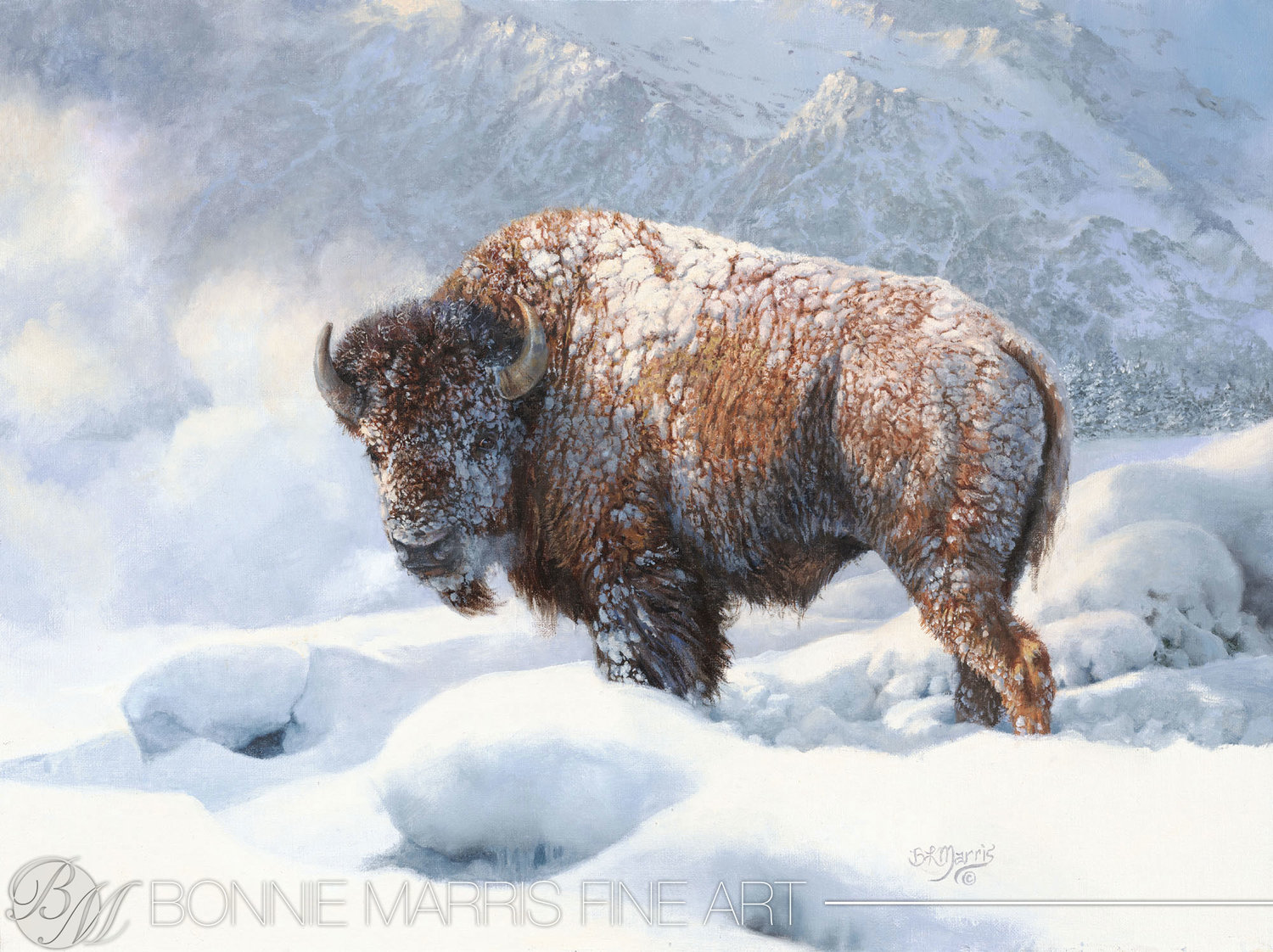 Early Blizzard by Bonnie Marris