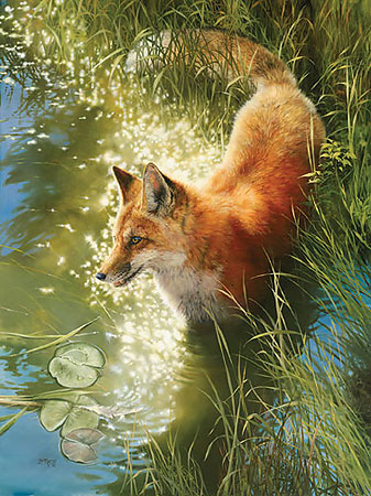 Out-Foxed by Bonnie Marris