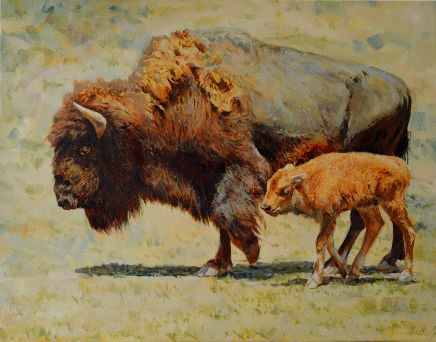 Bison and Kid by Dino Paravano