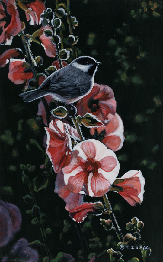Chickadee with Hollyhocks by Terry Isaac