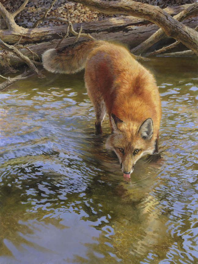 Cool Clear Water by Bonnie Marris