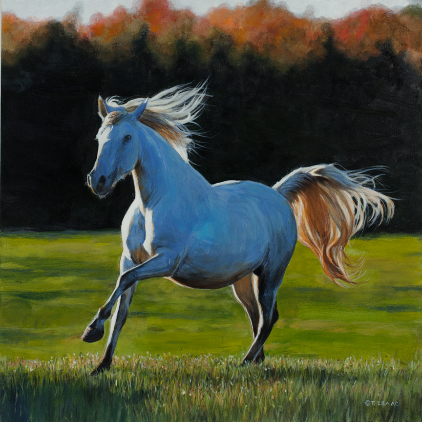 Full Gallop by Terry Isaac