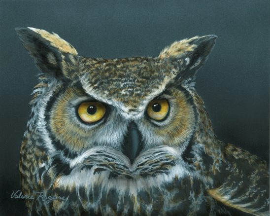 Great Horned Owl by Valerie Rogers
