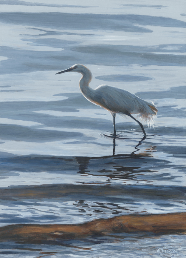 In the Waves – Egret by Terry Isaac