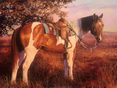 Into the Sunset by Bonnie Marris