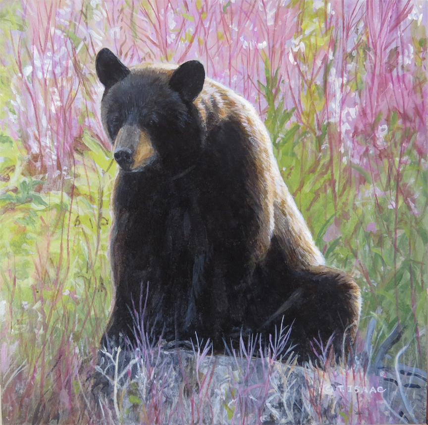 Sitting Bear by Terry Isaac