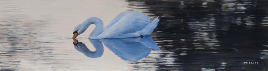 Reflective by Terry Isaac