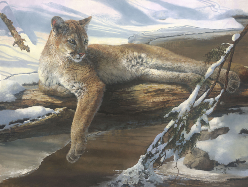 Winter Repose by Bonnie Marris