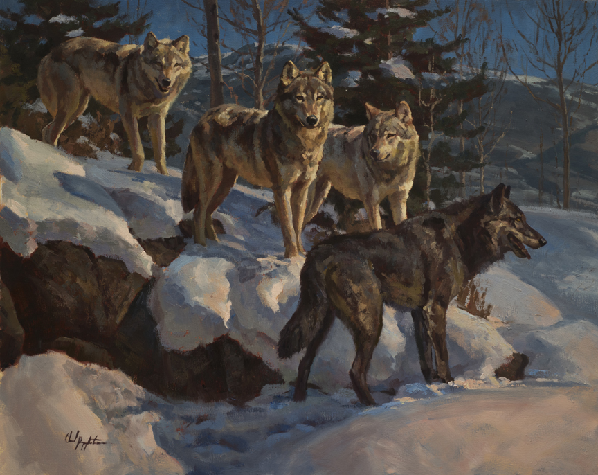 Wolves by Chad Poppleton