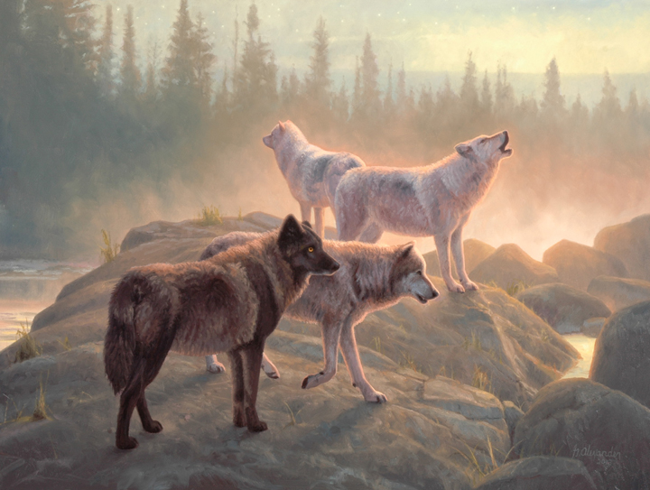 Wolves by Greg Alexander
