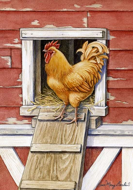 Farm – Rooster by Rose Mary Berlin