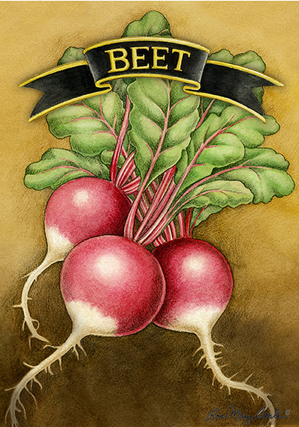 Garden – Beets by Rose Mary Berlin