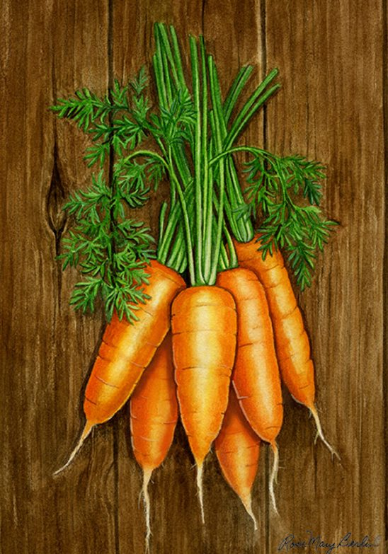 Garden – Carrots by Rose Mary Berlin
