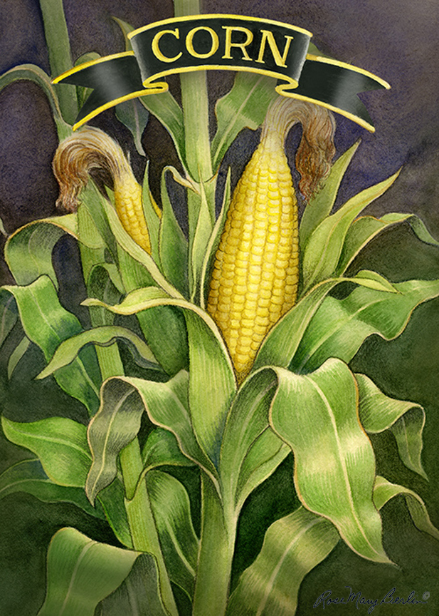 Garden – Corn Stalk by Rose Mary Berlin