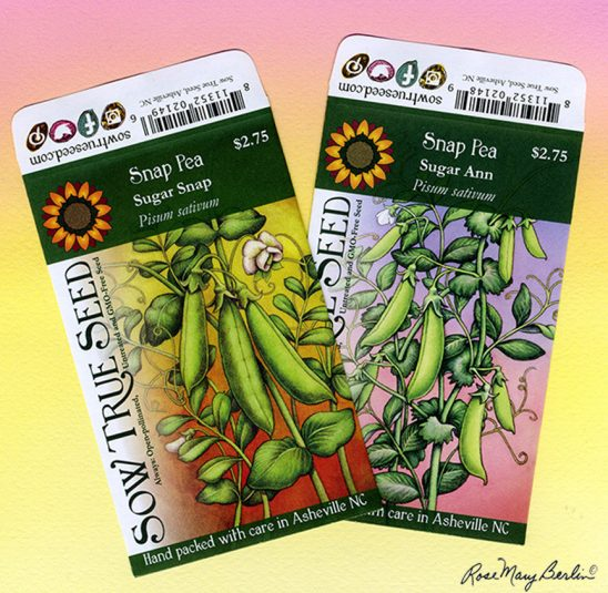 Garden – Pea Packets by Rose Mary Berlin