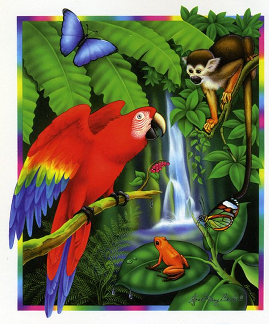Wildlife – Rainforest – Red Parrot by Rose Mary Berlin