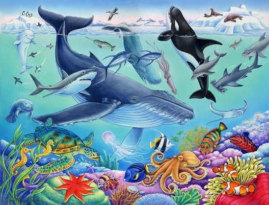 Wildlife – Under the Sea by Rose Mary Berlin