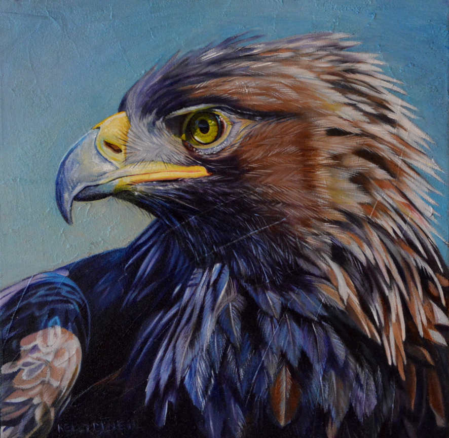 Golden Eagle by Kelly McNeil