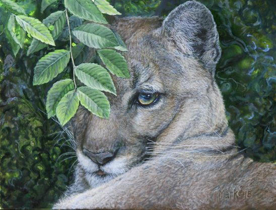Mountain Lion by Laura Mark-Finberg