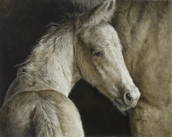 Palomina Filly Study by Bonnie Marris