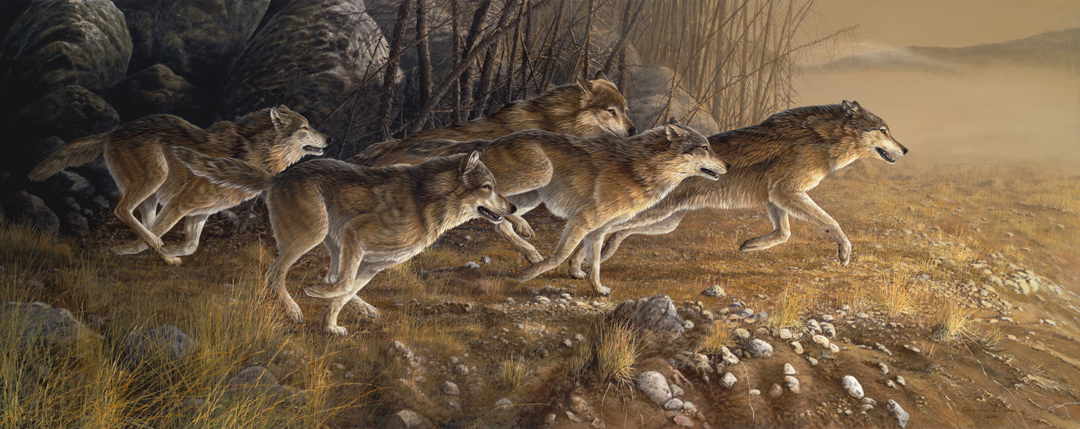 Wolf Pack by Christopher Walden