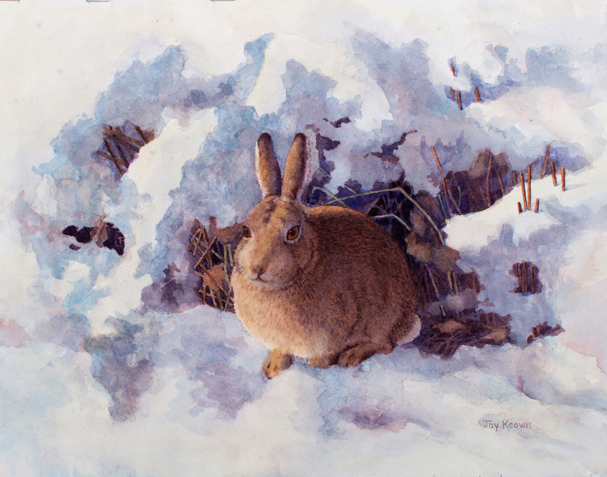 Bunny Blues by Joy Keown