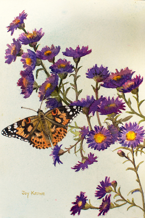 Painted Lady by Joy Keown
