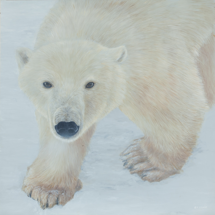 Polar Expression by Terry Isaac