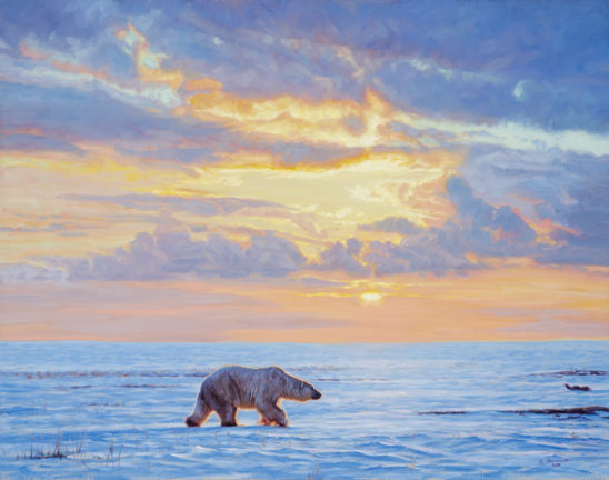 Polar Dawn by John Banovich