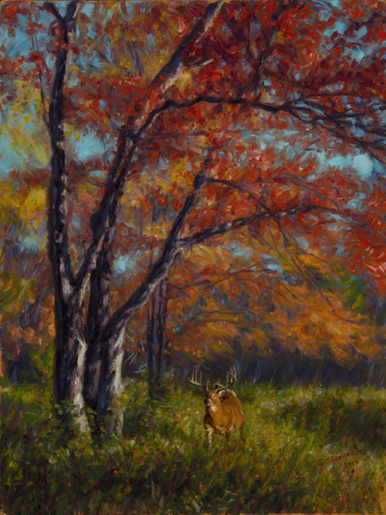 Whitetail Autumn by John Banovich