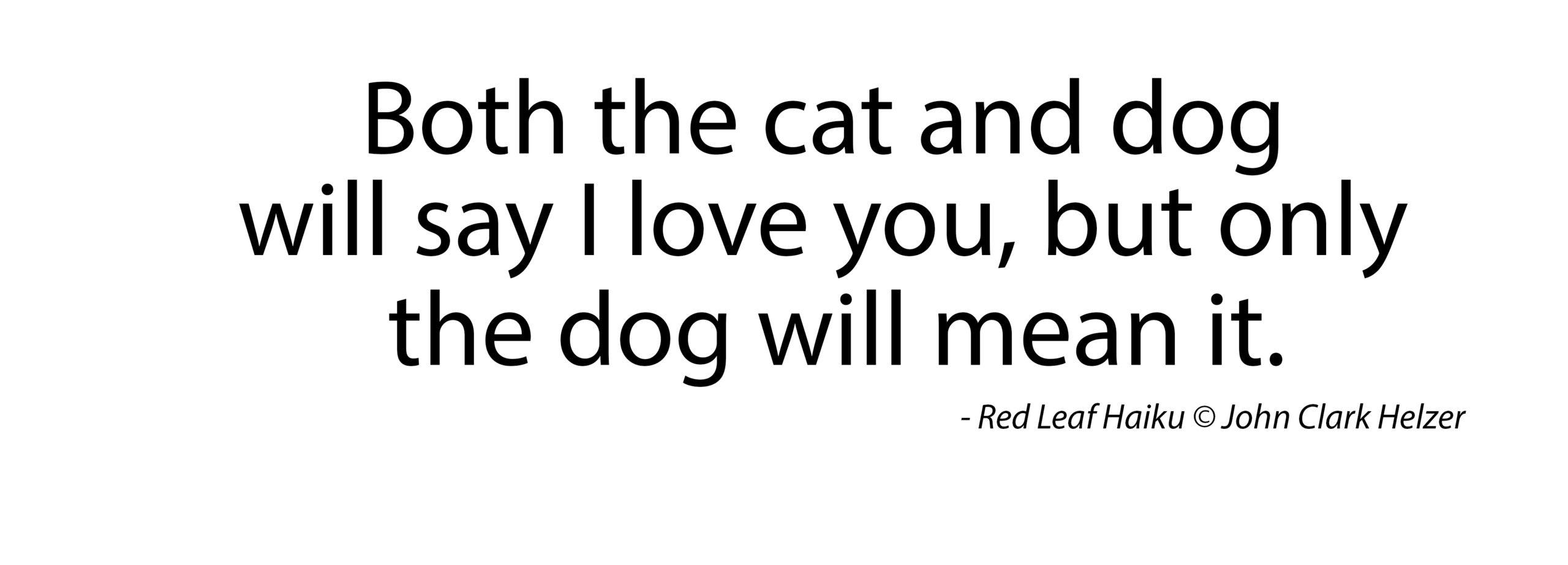 Haiku – Cat and Dog