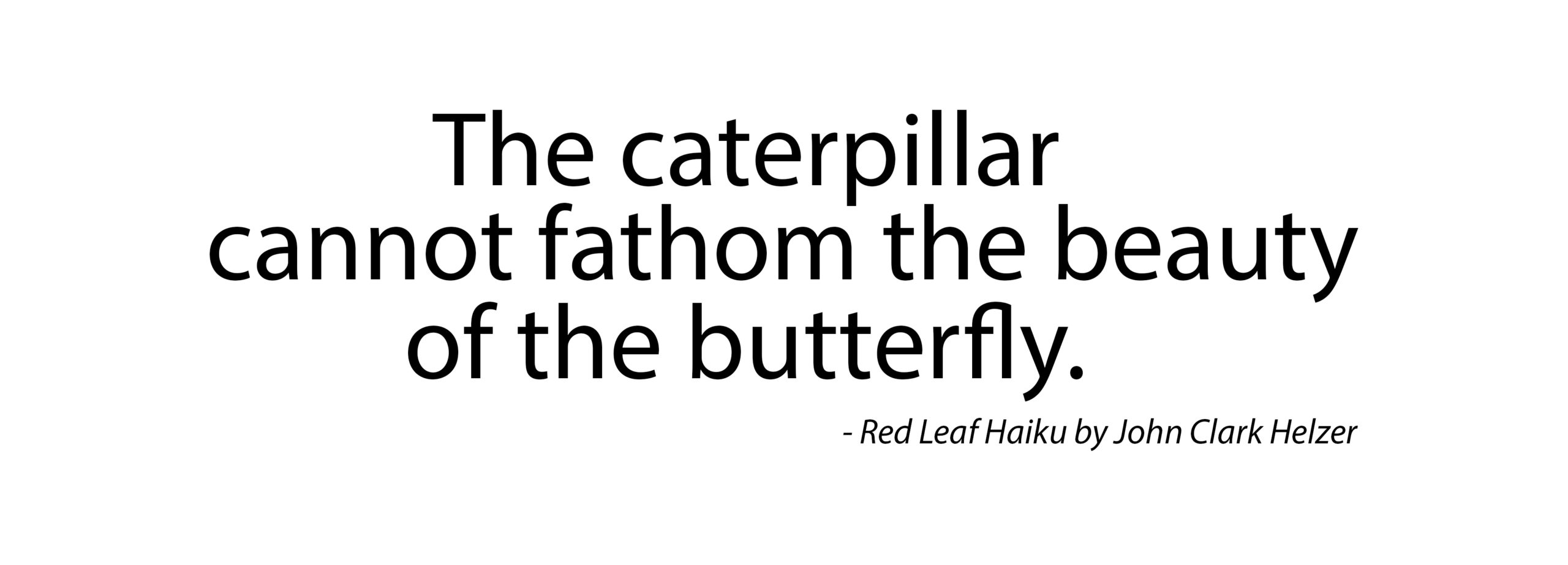 Haiku – Caterpillar and Butterfly