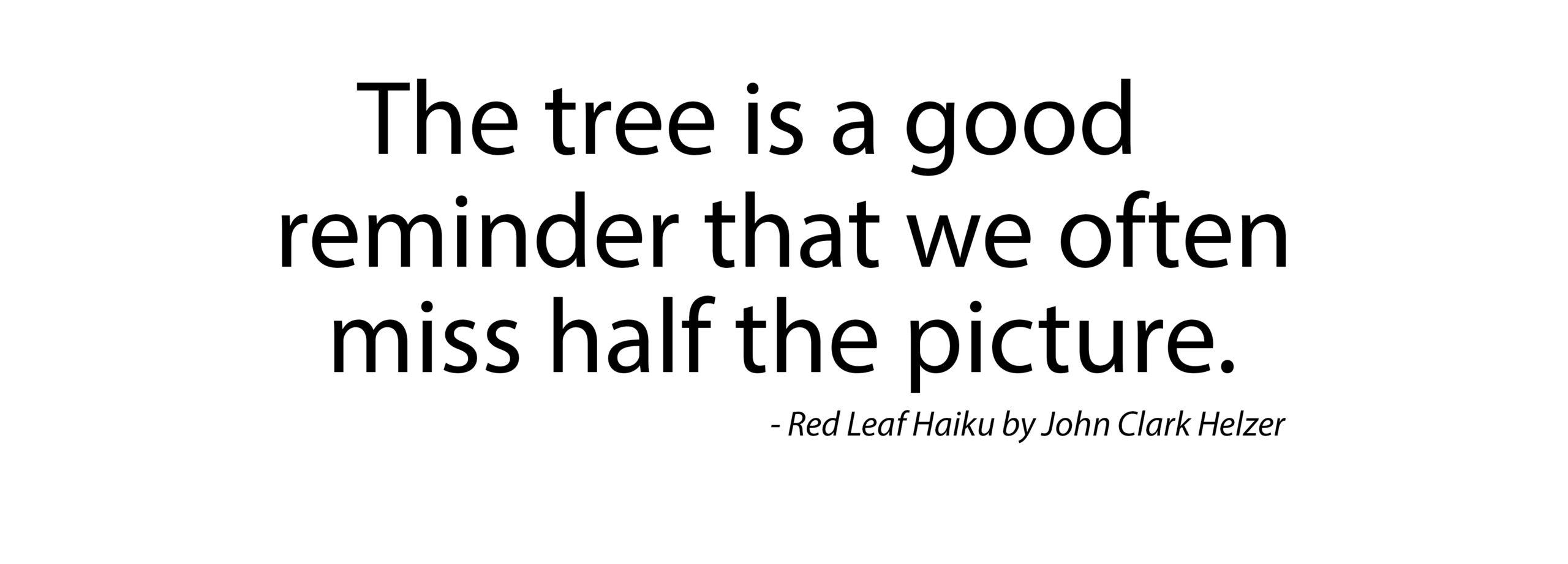 Haiku – Half the Picture