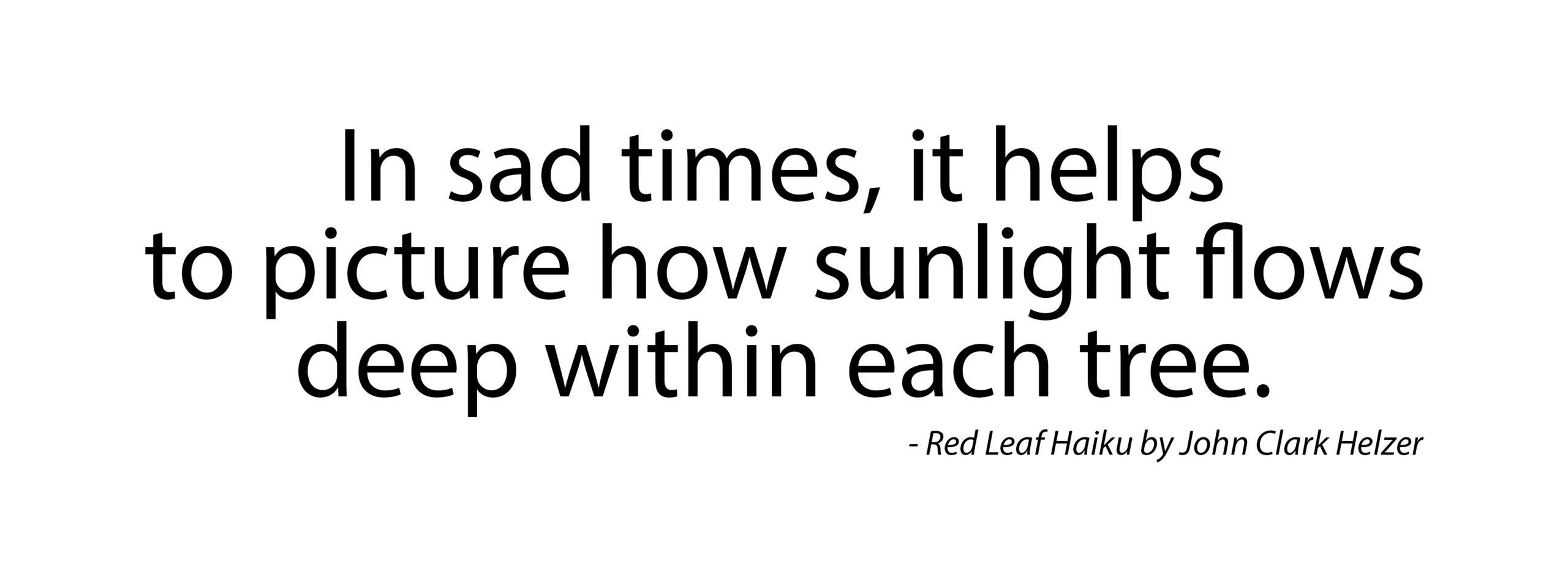 Haiku – Sunlight Flows