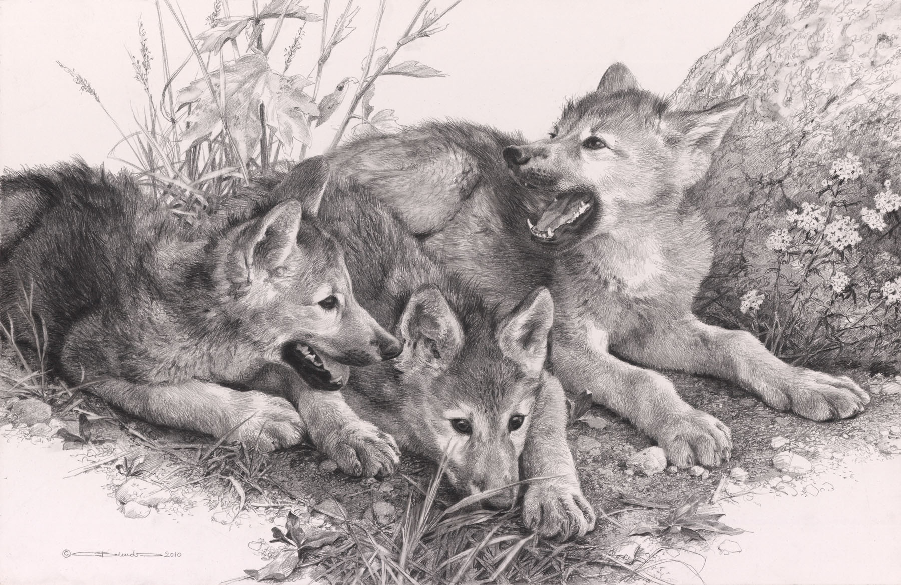 Waiting for Mom – pencil by Carl Brenders