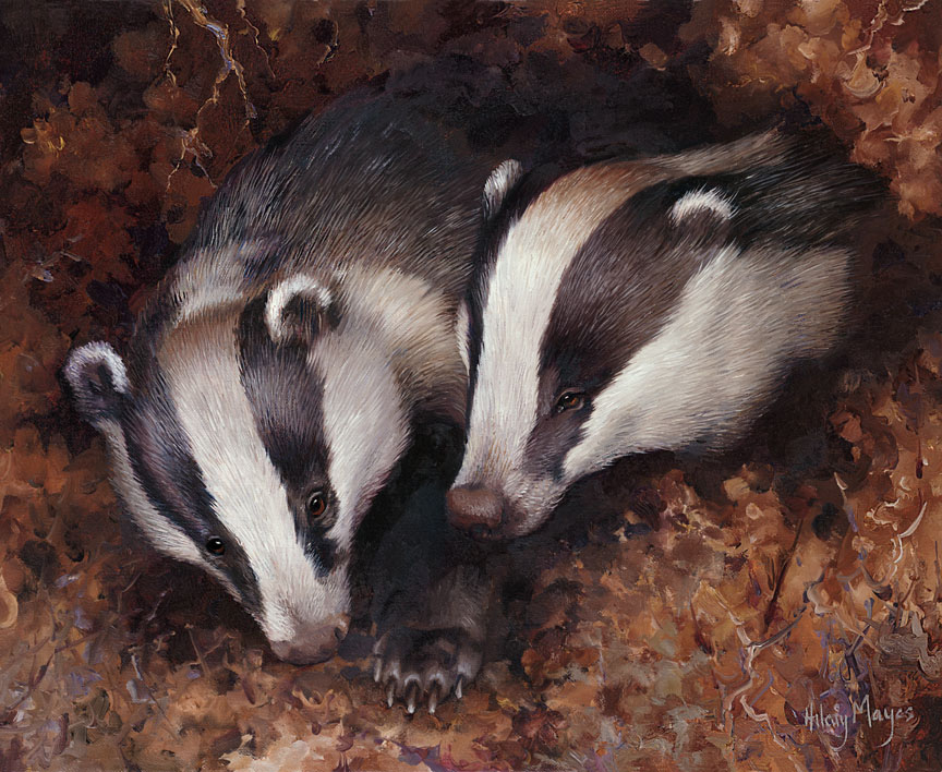 Wildlife – Badgers at Home by Hilary Mayes