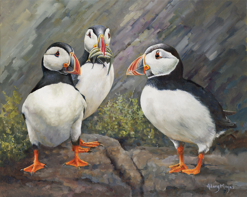 Wildlife – Just Chatting by Hilary Mayes