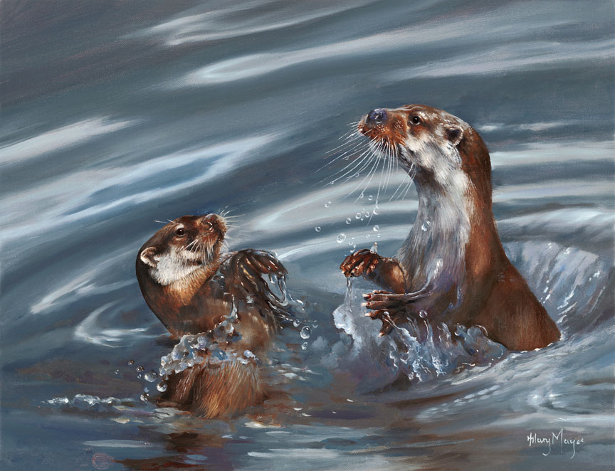 Wildlife – Otters by Hilary Mayes