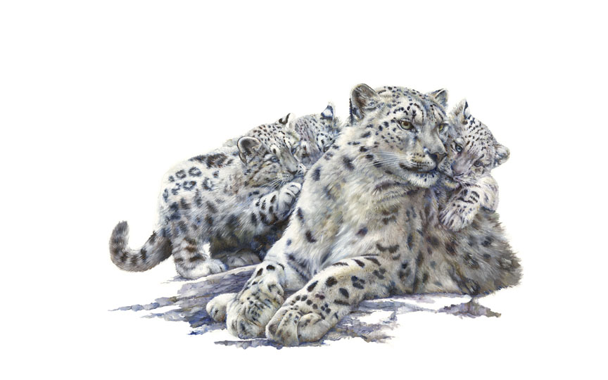 Wildlife – Snow Leopard Family by Hilary Mayes