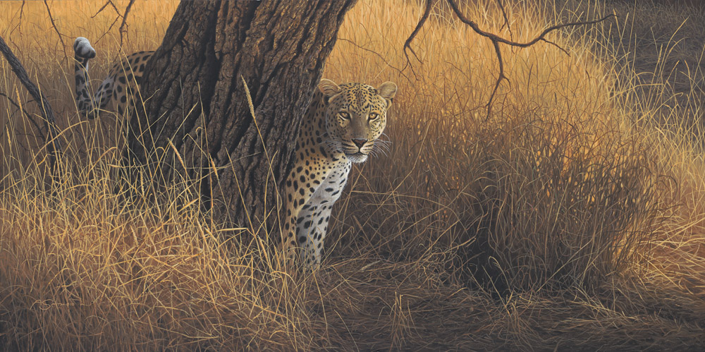 African – Evening Glow by Adam Smith